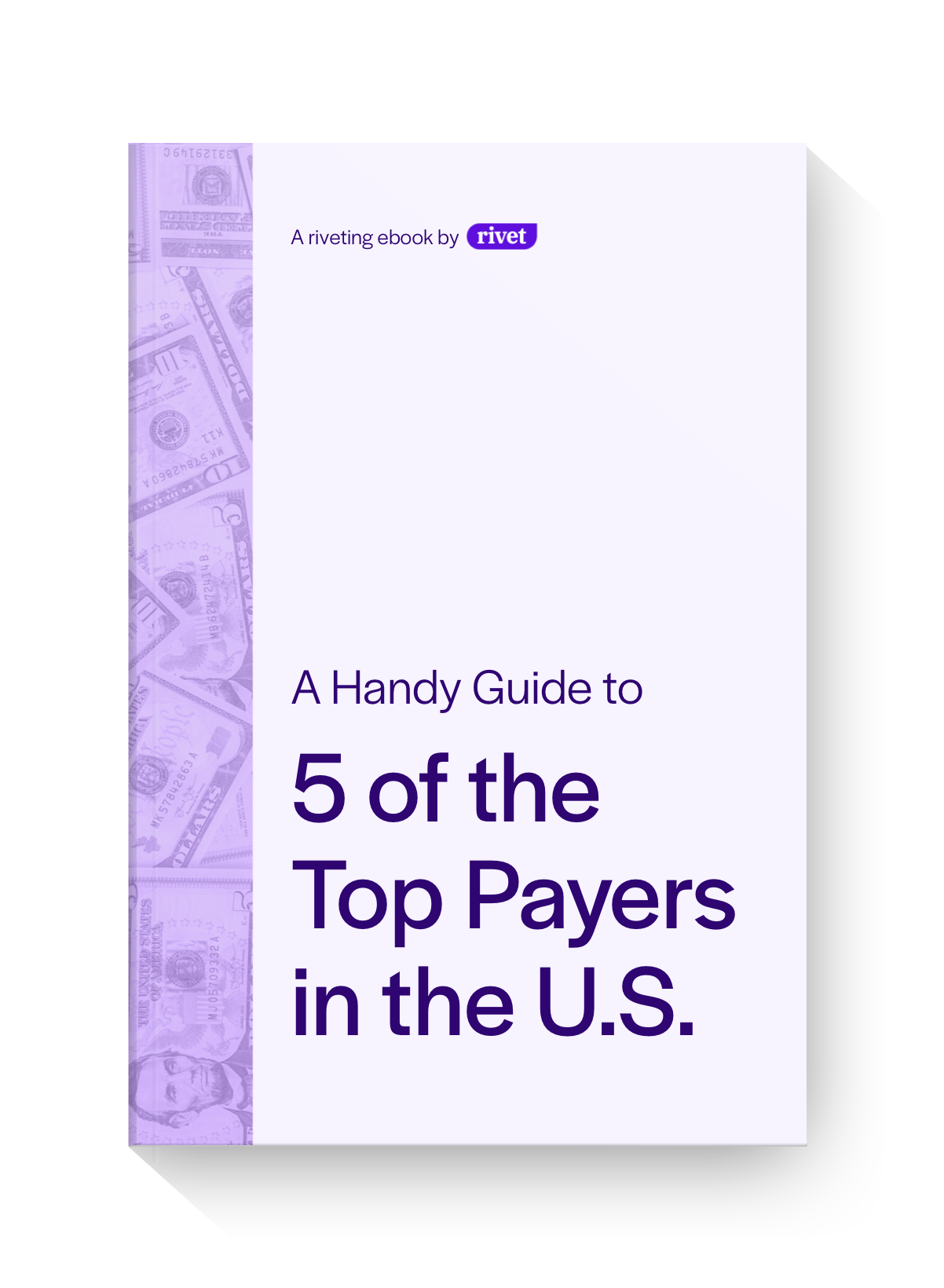 Mockup-Top 5 Payers